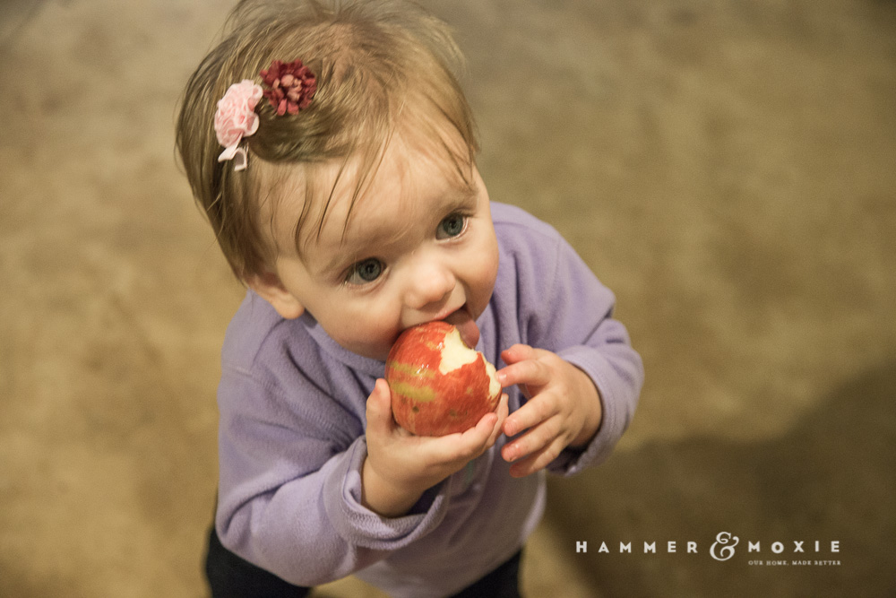 Applebutter | Hannah's Apple