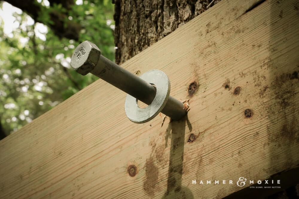 Treehouse Lag Bolt | Hammer & Moxie