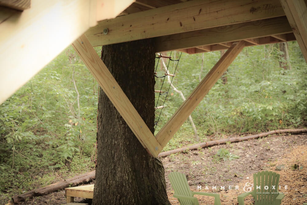Treehouse Knee Braces | Hammer & Moxie